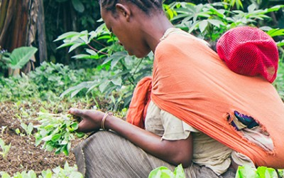 Building security for farmers in Ethiopia